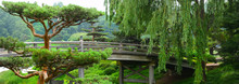 Bridge Crossing Over A Flowing River Leading To A Japanese Garde