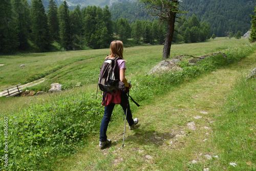 Fotografie, Obraz  camminare camminata escursione benessere nordic walking