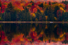 Kayaking In The Fall Foliage Reflected On The Lake