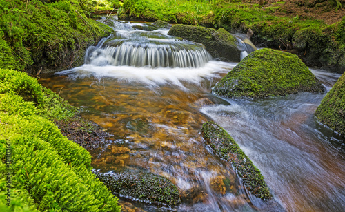 Fényképezés brook in forest , Sumava, Czech republic, Europe
