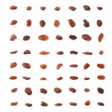 Multiple Single Raisins Isolated