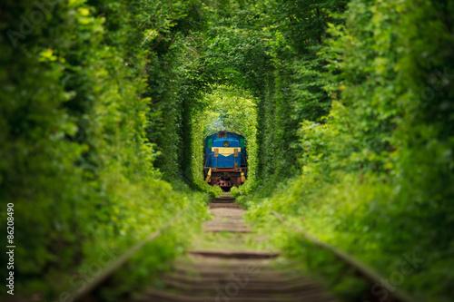 """tajny pociąg """"tunel miłości"""" na Ukrainie. Lato"""