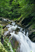 Mountain Stream Flowing Over Rocks In The Trees