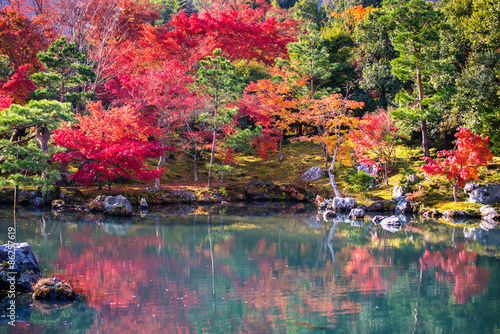 Foto op Canvas Zen Japanese garden in falling autumn season