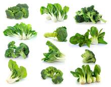 Broccoli And Bok Choy Vegetabl...