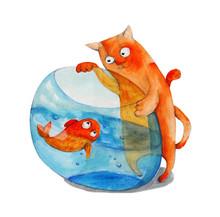 Cat And Fish In Aquarium. Wate...