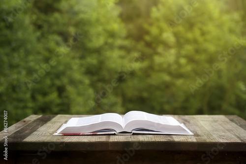 Fotografie, Obraz  oponed book on a wooden garden table
