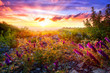 canvas print picture - Colourful sunset landscape