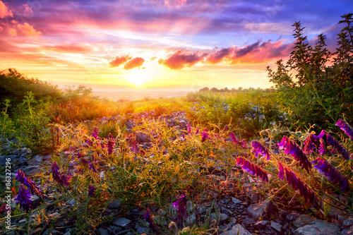 Fotografie, Obraz  Colourful sunset landscape