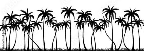Photo Palm trees silhouette seamless vector pattern