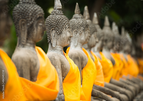 old Buddha statue in temple at Ayutthaya Canvas Print