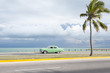 Classic vintage American car drives along an empty coastal road next to single palm tree