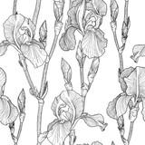 Seamless pattern with Beautiful iris flowers (black and white)