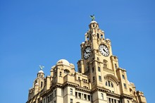 The Royal Liver Building, Live...