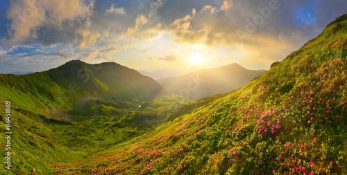 obraz dibond W letnich górach