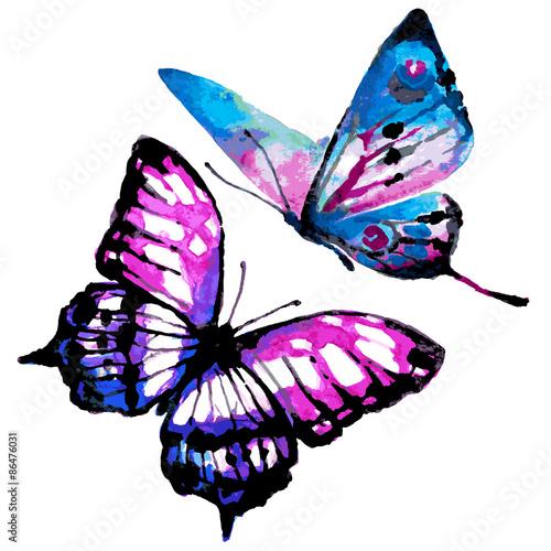 piekne-kolorowe-motyle