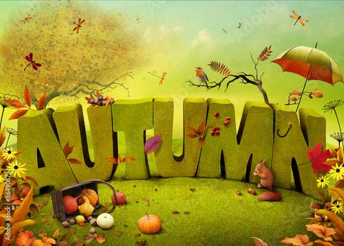 Bright autumn landscape field background  - 86490673