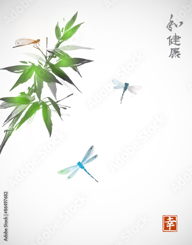bambusowa-galaz-i-trzy-wazki-na-jasnym-tle