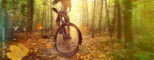 Forest Biker Canvas Print