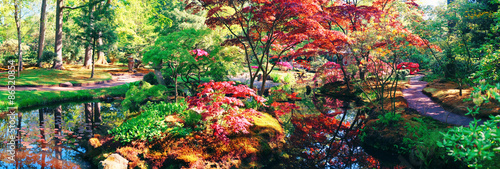 Photo Stands Garden nature background panorama