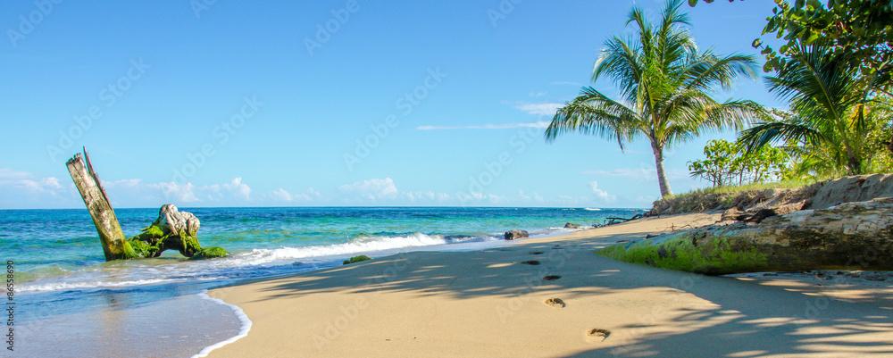 Fototapeta Caribbean beach of Costa Rica close to Puerto Viejo