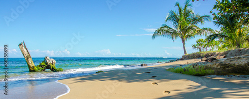 Photo Stands Caribbean Caribbean beach of Costa Rica close to Puerto Viejo