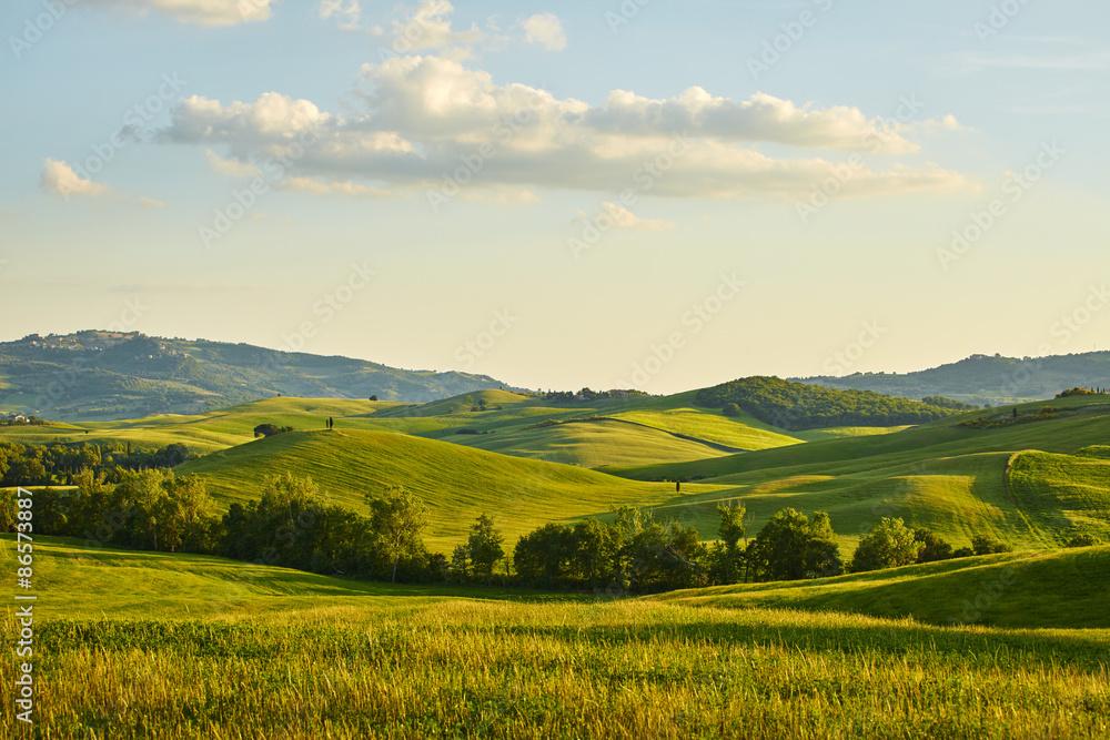 Fototapety, obrazy: Tuscany hills