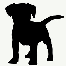 Dog Silhouette On White Backgr...