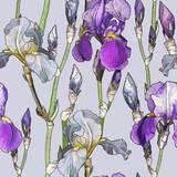 Seamless pattern with Beautiful iris flowers