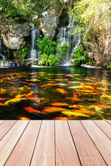 Fototapeta Wodospad Koi fish in pond at the garden with a waterfall and wood walkway