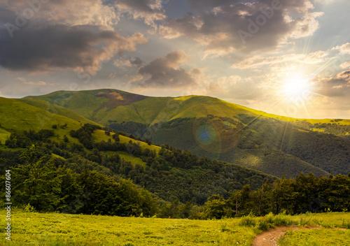 Foto auf Gartenposter Landschappen path through the forest in mountains at sunset