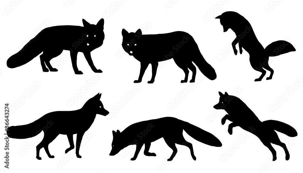 Fototapety, obrazy: fox silhouettes