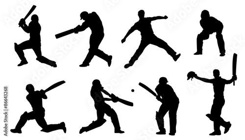 Cuadros en Lienzo cricket silhouettes
