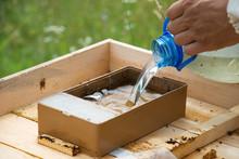 Supplemental Feeding Of Bees