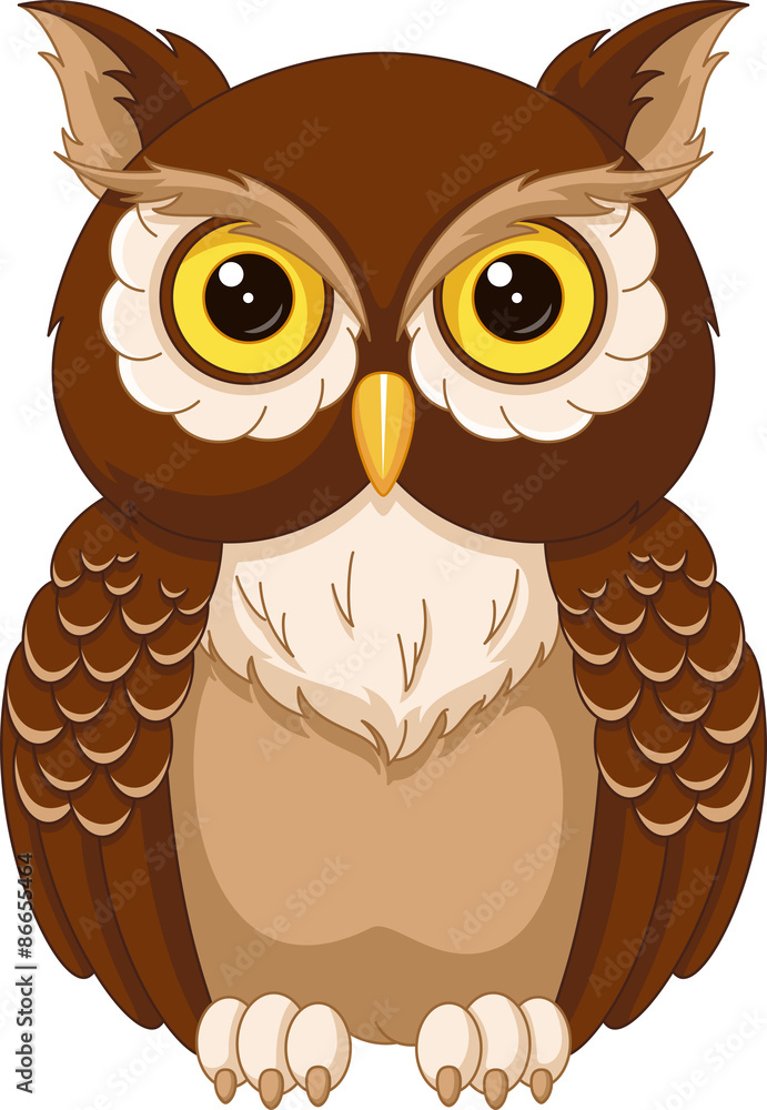Printed kitchen splashbacks Owl coloring page - Nikkel Art