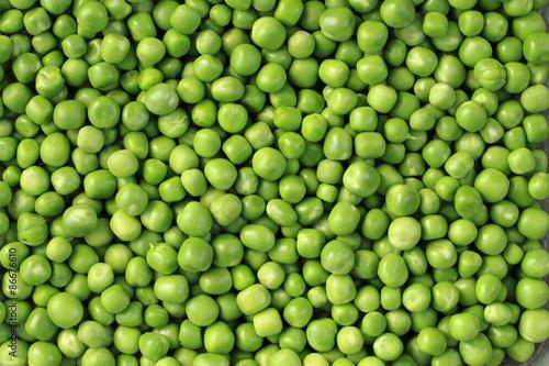 Fotografie, Tablou green pea background