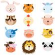 Cute Animal Heads Element