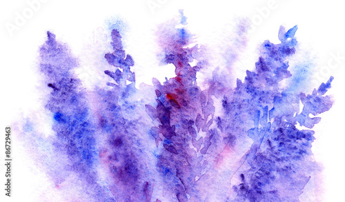 Watercolor lavender flower blossom background