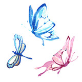 Fototapeta Motyle - butterfly,watercolor design