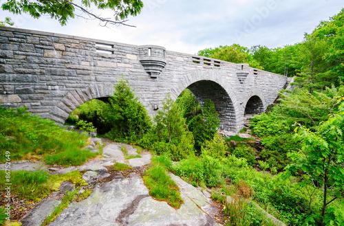 Deurstickers Natuur Park Bridge at Acadia National Park