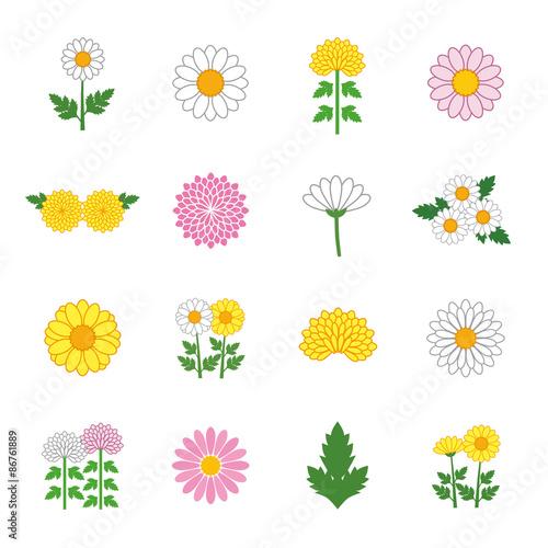 Chrysanthemum Daisy Marguerite icon set Wallpaper Mural