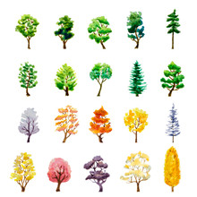 Set Of Trees On White. Watercolor Vector Illustration