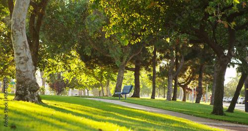 Sunny park Fotobehang