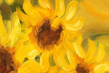 Sunny Sunflowers  Oil Painting...