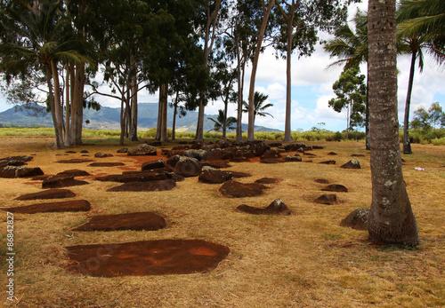 Photo sur Plexiglas Zen pierres a sable ハワイのパワースポット クカニロコ・バースストーン 王族の出産地跡 Kuaniloko Birth Stone, Hawaii
