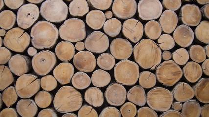Fototapeta Do pokoju wallpaper wood log