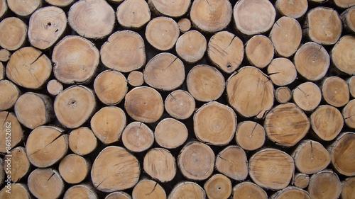 Türaufkleber Holz wallpaper wood log
