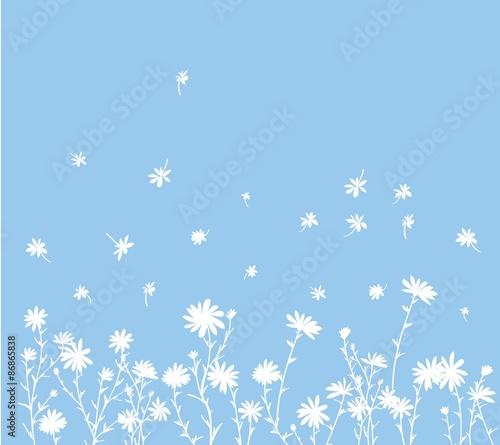 Photographie daisy pattern