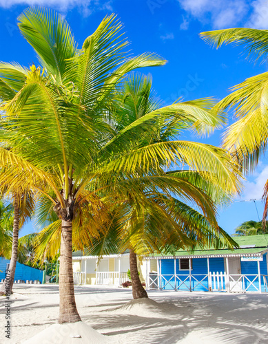 Foto op Plexiglas Caraïben Traditional caribbean houses