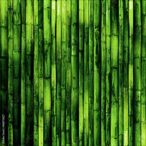 fototapeta na lodówkę Bambus ściana
